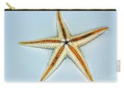 Seashell Wall Art 3 - Starfish Carry-all Pouch