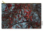 Seeing Red Carry-all Pouch