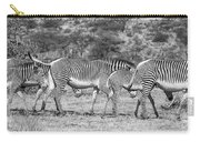 Seeing Stripes Carry-all Pouch