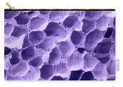 Sem Of Feather Quill Interior Carry-all Pouch