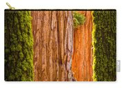 Sequoia Abstract Carry-all Pouch