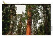 Sequoia In Kings Canyon Carry-all Pouch
