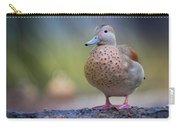 Seriously Cute Carry-all Pouch by Cindy Lark Hartman