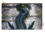Serpent Fountain Carry-all Pouch by Doug Sturgess