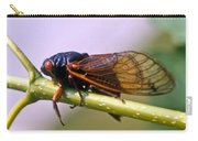 Seventeen Year Cicada Carry-all Pouch