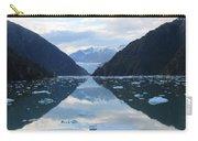 Sawyer Glacier  Carry-all Pouch