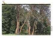 Seward Park Trees Carry-all Pouch