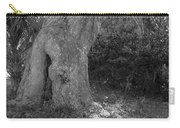 Kingsley Plantation Tree Carry-all Pouch