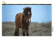 Shackleford Banks Pony Carry-all Pouch