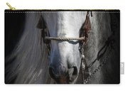 Shadowed Andalusian  Carry-all Pouch