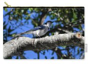 Shadowy Blue Jay Carry-all Pouch