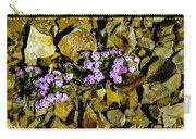 Shale Garden.  Carry-all Pouch
