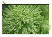 Shamrock Spider Mum Carry-all Pouch
