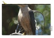 Sharp Shinned Hawk Carry-all Pouch