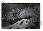 Shedd Aquarium Iguana Carry-all Pouch