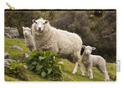 Sheep With Twin Lambs Stony Bay Carry-all Pouch by Colin Monteath