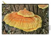 Shelf Fungus - Basidiomycota Carry-all Pouch