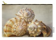 Shell Still Life Carry-all Pouch