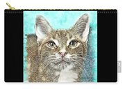 Shelter Cat Fantasy Art Carry-all Pouch