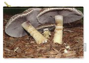 Sheltering The Young Carry-all Pouch