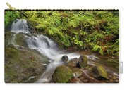 Shepperd's Dell Falls Carry-all Pouch