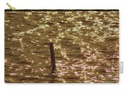 Shimmer Carry-all Pouch