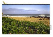 Shipwreck Beach Carry-all Pouch