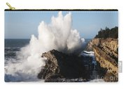 Shore Acres Waves 1 Carry-all Pouch