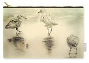 Shore Birds At Sunset Carry-all Pouch