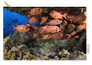 Shoulderbar Soldierfish Carry-all Pouch