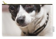 Shy Lonely Mini Fox Terrier Dog Laying On A Bed Carry-all Pouch
