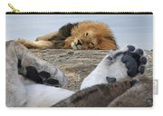 Siesta Time For Lions In Africa Carry-all Pouch
