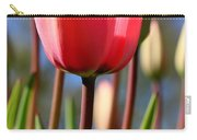 Signs Of Spring  Carry-all Pouch