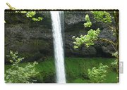 Silver Falls 1 Carry-all Pouch