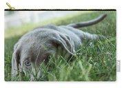Silver Labrador Retriever  Carry-all Pouch
