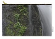 Silverdale Falls Carry-all Pouch