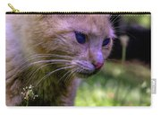 Skippy Feral Cat Portrait 0369b Carry-all Pouch