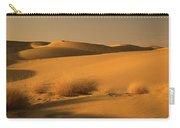 Skn 1124 Desert Landscape Carry-all Pouch