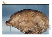 Skull Of Peking Man Carry-all Pouch