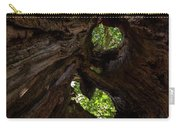 Sky View Through A Hollow Tree Trunk Carry-all Pouch