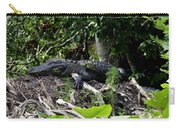 Sleeping Alligator Carry-all Pouch