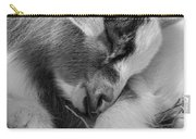 Sleeping Baby, Black And White Carry-all Pouch