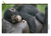 Sleeping Baby Chimpanzee Carry-all Pouch