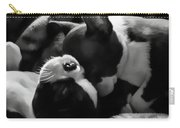 Sleeping Beauties - Boston Terriers Carry-all Pouch by Jordan Blackstone