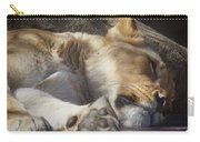 Sleeping Beauty,  Houston Zoo Carry-all Pouch