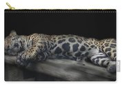 Sleeping Beauty Carry-all Pouch by M Montoya Alicea