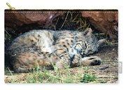 Sleeping Bobcat Carry-all Pouch