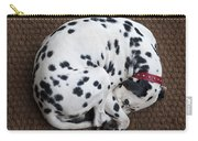 Sleeping Dalmatian II Carry-all Pouch