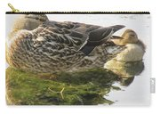Sleeping Ducks. Carry-all Pouch