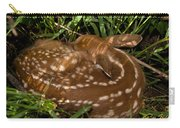 Sleeping Fawn Carry-all Pouch